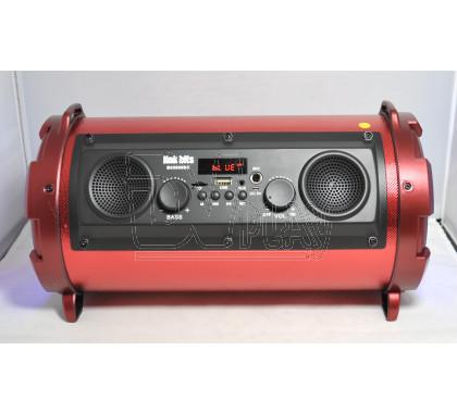 RFR113/1602 портативная акустика