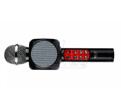 Magic Karaoke Wster WS-1816 черный
