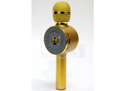 Magic Karaoke Wster WS-668 золотой