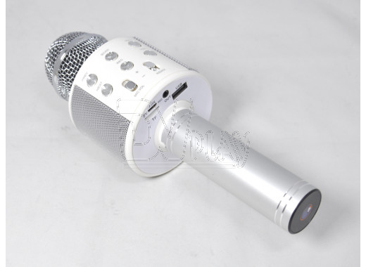Magic Karaoke Wster WS-858 серебристый