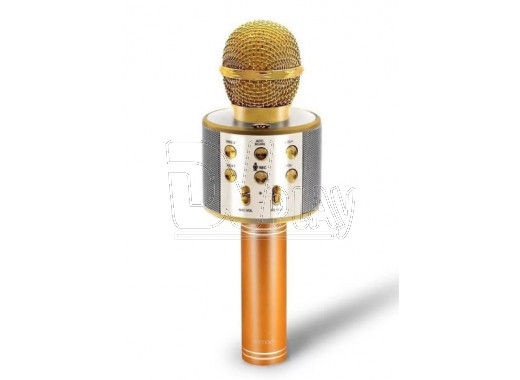 Magic Karaoke Wster WS-858 золотой