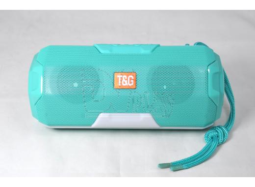 PORTABLE TG-143 портативная акустика