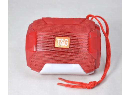 PORTABLE TG-162 портативная акустика