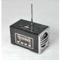 WS-318 портативная акустика