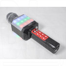 Magic Karaoke Wster WS-1828 черный