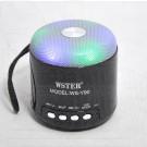 WSTER WS-Y90 портативная акустика