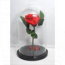 Роза в колбе 27 см.